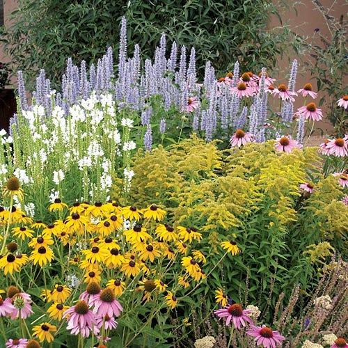 Summer Dreams Pre Planned Garden High Country Gardens