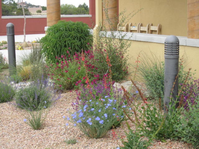 Placitas Community Library Garden - After