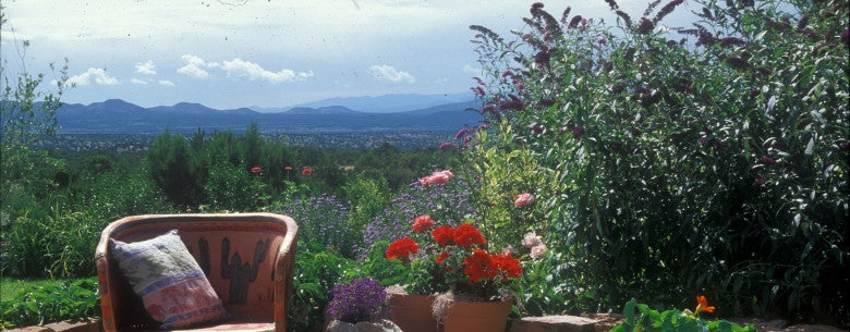 Patio with view Santa Fe 97 - group of native plants