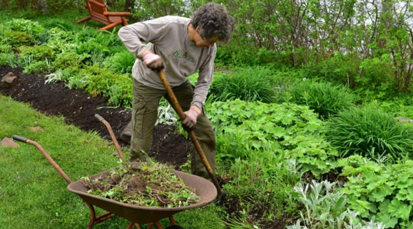 Five Eye-Popping Benefits Of Our Favorite Activity – Gardening!