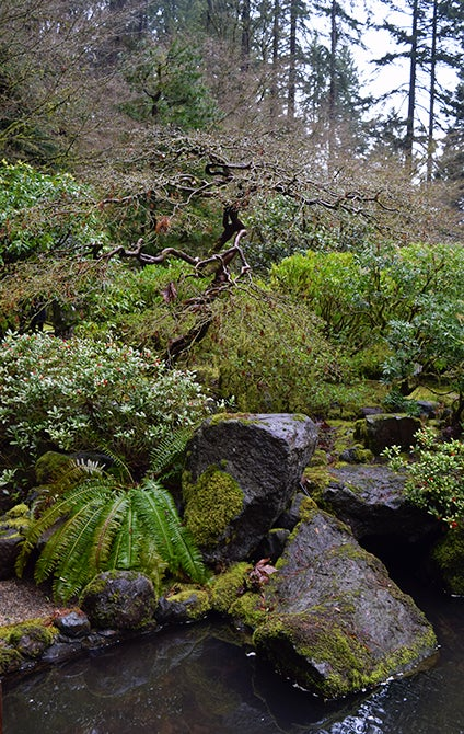 portland japanese gardens - water feature