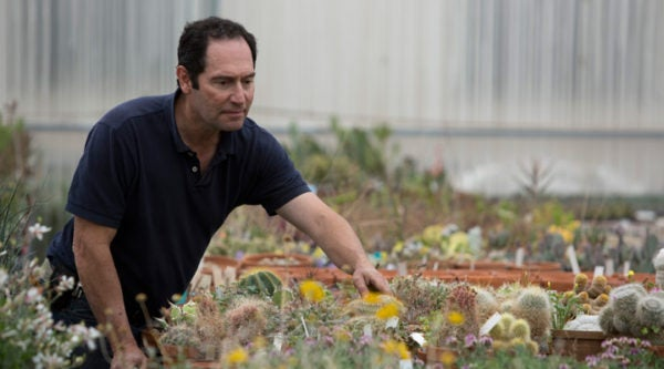 Horticulturist and Founder and Chief Horticulturist David Salman caring for succulents in the greenhouse.