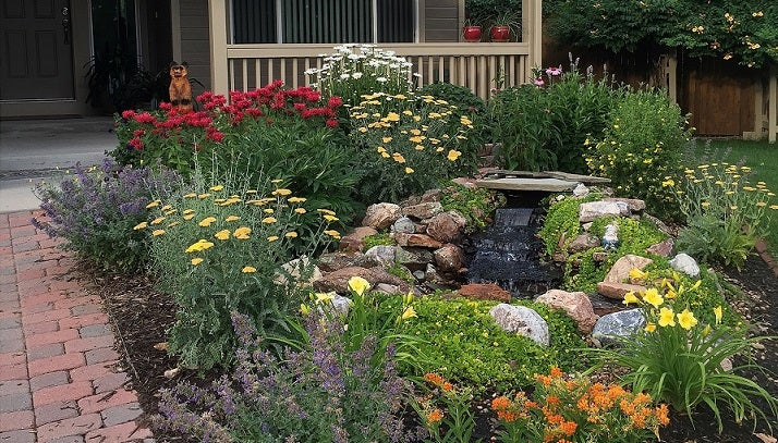 Perennial Garden in full bloom - most of these may have arrived as dormant plants