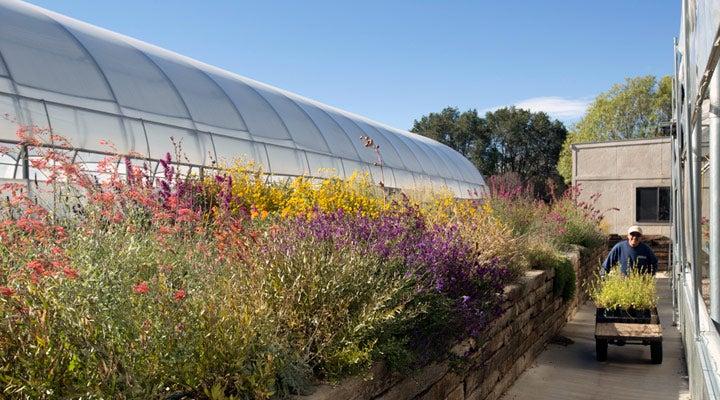 Development greenhouses and test gardens in Santa Fe, NM.