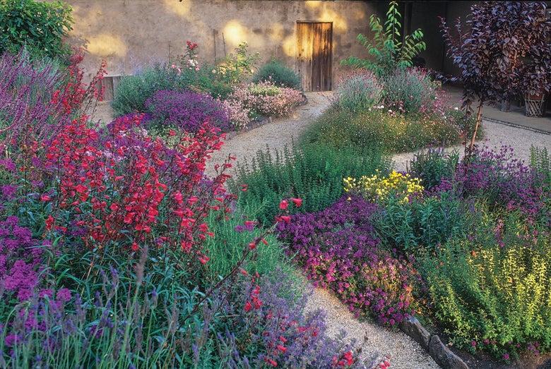 sonoma california garden