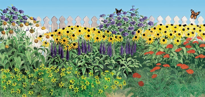 How to plant a butterfly garden the high country gardens for Landscape pre planned garden designs