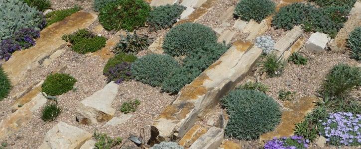 The Denver Botanic Garden's Crevice Rock Gardens