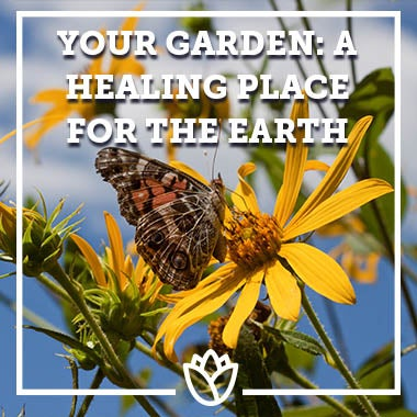 Your Garden - A Healing Place For The Earth