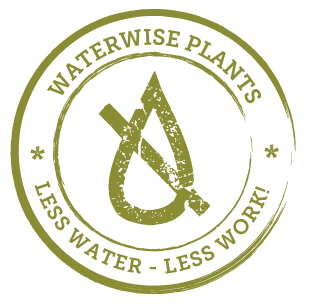 Waterwise Plants - Less Water - Less Wor!