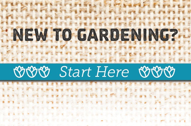 new to gardening help guides