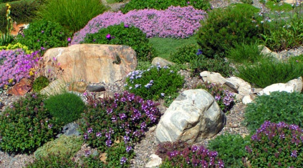 This rock garden uses gravel mulch to make gardening simpler.