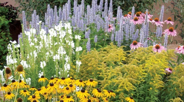 The Summer Dreams Pre-Planned Garden is another popular Summer-Blooming Pre-Planned Garden, perfect for small spaces.