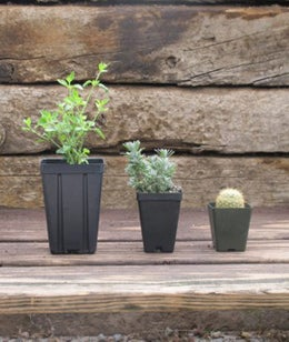 three pot sizes